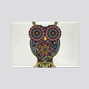 Vibrant Owl Magnets