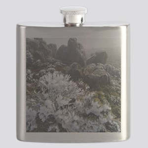 frost covered plant Flask