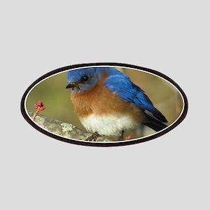 Bluebird Patches