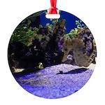 Seahorse Pair Round Ornament