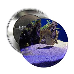 Seahorse Pair 2.25