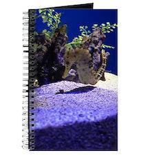 Seahorse Pair Journal
