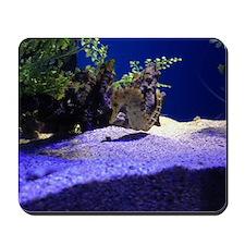 Seahorse Pair Mousepad