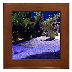 Seahorse Pair Framed Tile