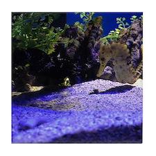 Seahorse Pair Tile Coaster