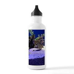 Seahorse Pair Water Bottle