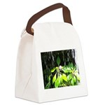 Under the Waterfall Canvas Lunch Bag