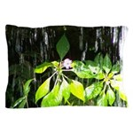 Under the Waterfall Pillow Case