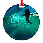 Shark! Round Ornament