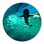 Shark! Round Car Magnet
