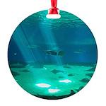 Fishy Conversation Round Ornament