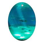 Fishy Conversation Ornament (Oval)
