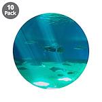 Fishy Conversation 3.5