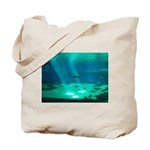 Fishy Conversation Tote Bag