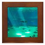 Fishy Conversation Framed Tile