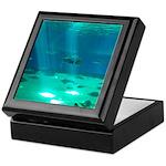 Fishy Conversation Keepsake Box
