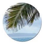 Palm Frond Round Car Magnet