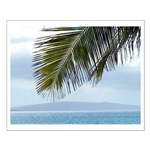 Palm Frond Small Poster