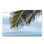 Palm Frond Postcards (Package of 8)
