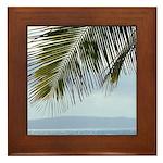Palm Frond Framed Tile