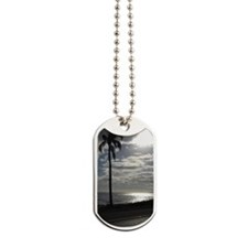 Palm Tree Evening Dog Tags