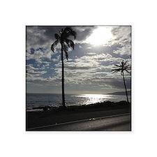 Palm Tree Evening Sticker