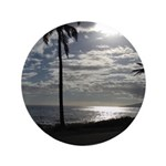Palm Tree Evening 3.5
