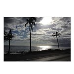 Palm Tree Evening Postcards (Package of 8)