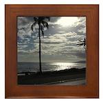 Palm Tree Evening Framed Tile