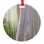 Rainbow Eucalyptus Tree Round Ornament