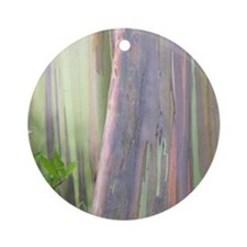 Rainbow Eucalyptus Tree Ornament (Round)