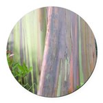 Rainbow Eucalyptus Tree Round Car Magnet