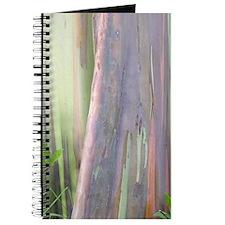 Rainbow Eucalyptus Tree Journal