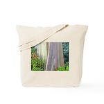 Rainbow Eucalyptus Tree Tote Bag