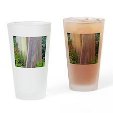 Rainbow Eucalyptus Tree Drinking Glass
