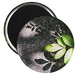 Leaf Shadow Magnets