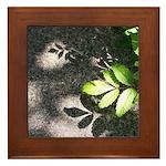 Leaf Shadow Framed Tile