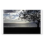 Seaside Tree Sticker