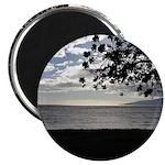 Seaside Tree Magnets
