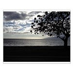 Seaside Tree Small Poster