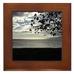 Seaside Tree Framed Tile
