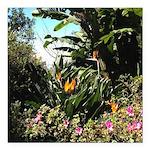 Tropical Gardens on Maui Square Car Magnet 3