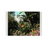 Tropical Gardens on Maui Magnets