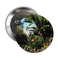 Tropical Gardens on Maui 2.25