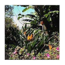 Tropical Gardens on Maui Tile Coaster