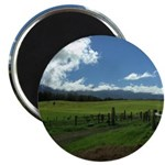 Maui Meadows Magnets