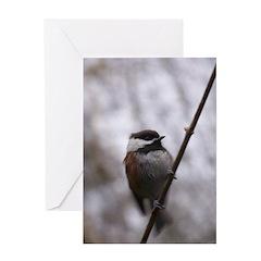 Chickadee Winter Greeting Cards