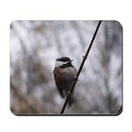 Chickadee Winter Mousepad