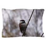 Chickadee Winter Pillow Case