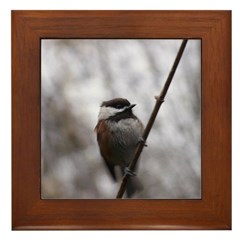 Chickadee Winter Framed Tile